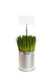 может металл зеленого цвета травы стоковые изображения