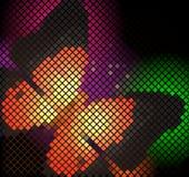 мозаика бабочки Стоковое Изображение RF