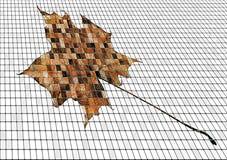 мозаика вянуть кленового листа Стоковая Фотография RF