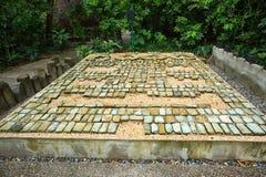 мозаика камня olmec Пре-испанца в Мексике Стоковая Фотография RF