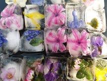 Мозаика красочной весны цветет замороженное для украшения Стоковые Изображения RF