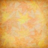мозаика листьев падения Стоковые Фотографии RF