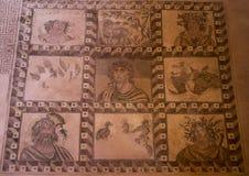 Мозаика пола внутри дома Dionysos, Paphos стоковое фото rf
