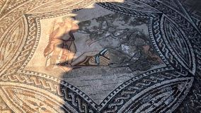 Мозаика римских старых руин города Volubilis в ЮНЕСКО, Марокко видеоматериал