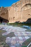 Мозаики в Palestre на Terme di Caracalla на Рим Стоковая Фотография RF