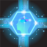 Мозг абстрактного электрического контура цифровой, Стоковое фото RF