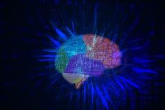 Мозг в виртуальном пространстве Стоковые Изображения