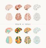 Мозг и иллюстрация значка идей установленная иллюстрация штока