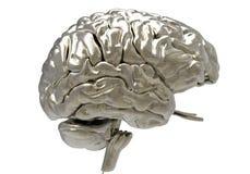 Мозг с маской клиппирования Стоковые Фото