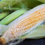 Мозоль, сладкий, желтая, сбор, еда, свежая, земледелие, хлопья, органические стоковое фото rf