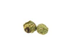 Мозоль зеленого перца изолированная на белой предпосылке Стоковые Фотографии RF