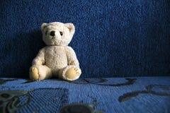 Мой любимый медведь стоковое изображение