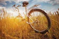 Мой славный старый велосипед Стоковое фото RF