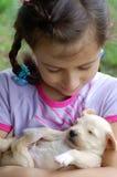 мой щенок Стоковая Фотография