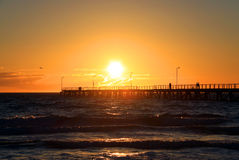 мола adelaide Австралии над заходом солнца стоковые изображения rf