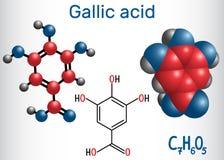 Молекула галловой кислоты trihydroxybenzoic кисловочная, феноловая кислота, иллюстрация вектора