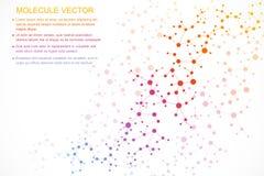 Молекула и связь структуры Дна, атом, нейроны Научная концепция для вашего дизайна Соединенные линии с точками Стоковые Изображения RF