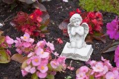 Молить ангела Стоковое фото RF