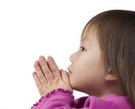 молить Стоковые Фото