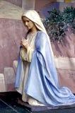 молить mary Стоковое Фото