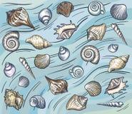 Моллюск и seashells моря также вектор иллюстрации притяжки corel Стоковое Изображение
