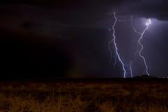 молния лаванды Стоковое Изображение RF