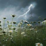 молния поля над забастовкой Стоковая Фотография