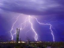 молния catalina Стоковое фото RF