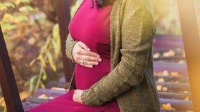 Молодая беременная женщина идет в парк осени Она нежно стоковое фото