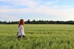 Молодая дама в пшеничном поле стоковые изображения