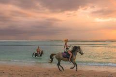 Молодая европейская женщина ехать лошадь на пляже в заходе солнца стоковая фотография rf