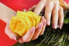 Молодая женская рука с бежевыми ногтями красит держать розу желтого цвета стоковые изображения rf