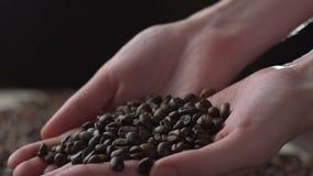 Молодая женщина вручает лить зерна кофе в крупном плане замедленных движений акции видеоматериалы