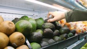 Молодая женщина выбирая авокадоы в гастрономе Плоды и Veggies девушки отхода Vegan нул покупая в органическом супермаркете 4K акции видеоматериалы