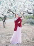 Молодая женщина в садах blossoming миндалин в красивом длинном платье Стоковые Изображения RF