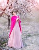 Молодая женщина в садах blossoming миндалин в красивом длинном платье Стоковое фото RF
