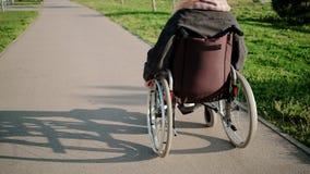 Молодая женщина двигает дорогой в парке ехать инвалидный стул в солнечной погоде сток-видео