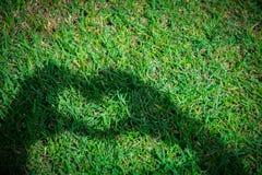 Молодая женщина делая символ тени сердца влюбленности руками над травой стоковые изображения rf