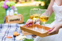 Молодая женщина держа блюдо с вином стекел белым на сумме пикника стоковые изображения