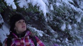 Молодая женщина идет самостоятельно через снежный лес молодой милый турист крадется через смещения снега она смотрит вокруг акции видеоматериалы