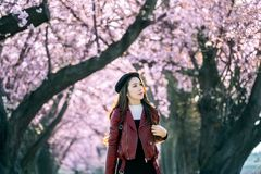 Молодая женщина идя в сад вишневого цвета на весенний день Деревья вишневого цвета строки в Киото, Японии стоковые фотографии rf