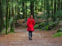 Молодая женщина идя прочь самостоятельно на путь леса нося красное длинное пальто стоковая фотография rf
