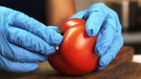 Молодая женщина извлекает peduncle от красного томата на таблице в кухне квартиры сток-видео