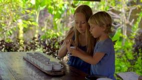 Молодая женщина и ее меньший сын на дегустации чая, degustationin тропическое кафе акции видеоматериалы