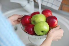 Молодая женщина моя зрелые яблока Стоковая Фотография RF
