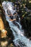 Молодая женщина наслаждаясь свежестью водопада стоковое фото rf