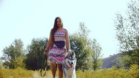 Молодая женщина, на день лета солнечный, идет через лес с осиплой собакой акции видеоматериалы