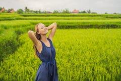 Молодая женщина на зеленой плантации поля риса каскада bali Индонесия стоковая фотография