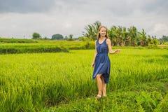Молодая женщина на зеленой плантации поля риса каскада bali Индонесия стоковые изображения rf