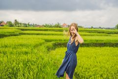 Молодая женщина на зеленой плантации поля риса каскада bali Индонесия стоковое фото rf